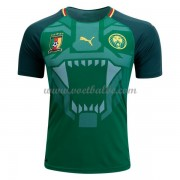 Voetbalshirt Cameroon 2018 thuis tenue ..