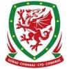 Wales Voetbaltenue